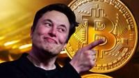 Elon Musk đổi giọng, Bitcoin có lúc thủng 48.000 USD