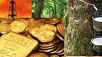 Thị trường ngày 27/11: Giá dầu quay đầu giảm, vàng, quặng sắt và thép đồng loạt tăng