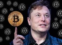"""Elon Musk lại """"tung chiêu"""" để """"thổi giá"""" Bitcoin?"""