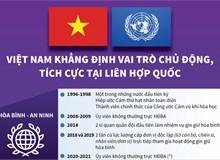 Việt Nam khẳng định vai trò chủ động, tích cực tại Liên hợp quốc