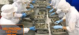 Các doanh nghiệp thủy sản đăng ký mua 500.000 liều vắc-xin phòng Covid-19