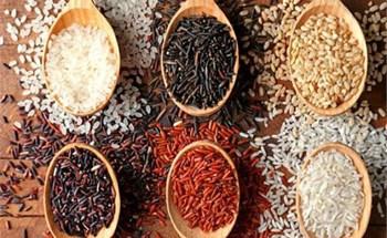 Chuyên gia Ấn Độ khuyên ngâm gạo trước khi nấu cơm: Những lợi ích bất ngờ và cách ngâm gạo đúng