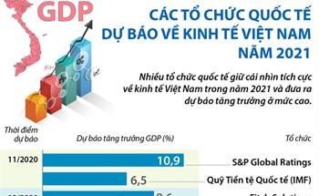 Các tổ chức quốc tế dự báo về kinh tế Việt Nam năm 2021
