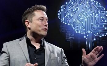 Elon Musk gây sốc khi cấy chip vào não khỉ để chơi game bằng suy nghĩ