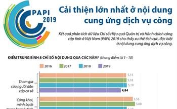 PAPI 2019: Cải thiện lớn nhất ở nội dung cung ứng dịch vụ công