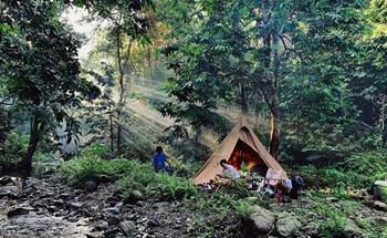 Người Việt vào rừng cắm trại trốn Covid-19