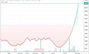 Vì sao cổ phiếu DAT liên tục tăng trần?