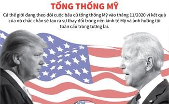 Chính sách kinh tế của 2 ứng viên tổng thống Mỹ