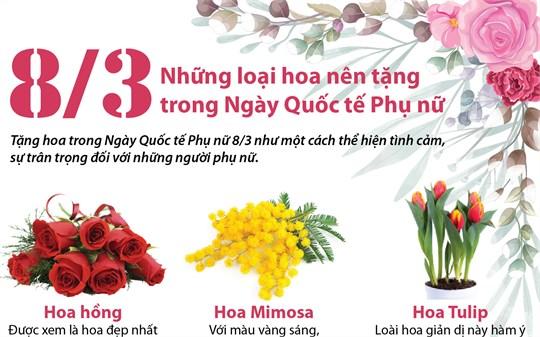 Những loại hoa nên tặng trong Ngày Quốc tế Phụ nữ 8/3