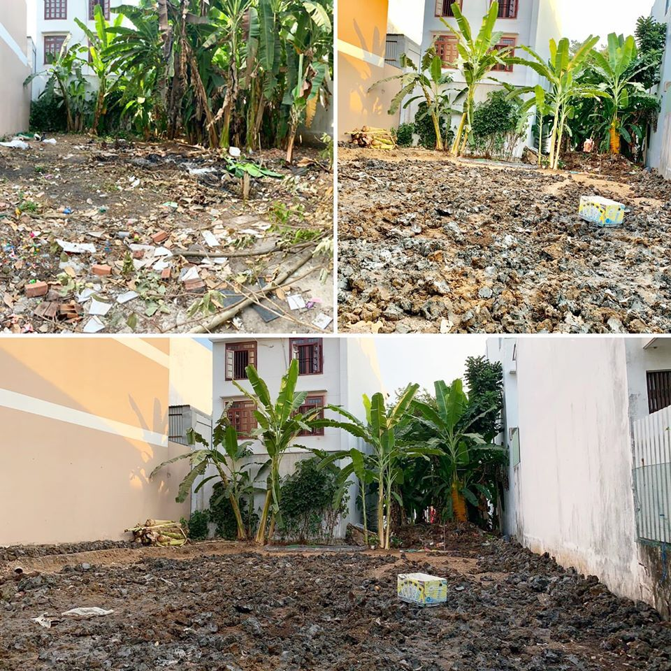 Mảnh đất đầy rác biến thành vườn rau xanh mướt - Ảnh 2