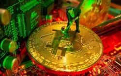 """Nhiều yếu tố giúp Mỹ trở thành """"kinh đô"""" đào bitcoin của thế giới"""