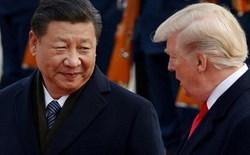 Chuyên gia không tin Trung Quốc có thể mua thêm 50 tỷ USD nông sản Mỹ