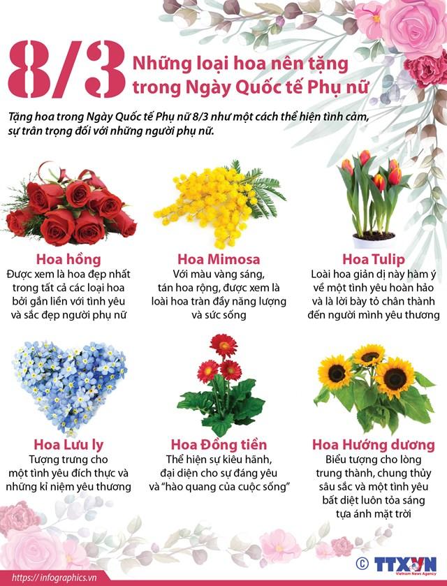 Những loại hoa nên tặng trong Ngày Quốc tế Phụ nữ 8/3 - Ảnh 1