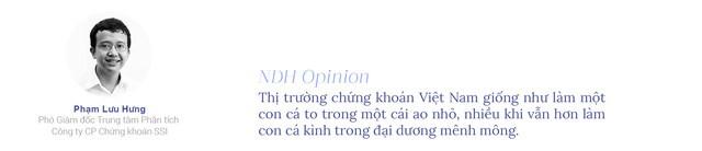 20 năm chứng khoán Việt Nam: Dang dở kỳ vọng nâng hạng thị trường - Ảnh 2